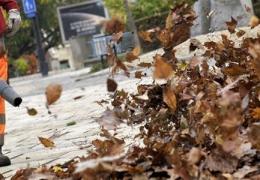 Souffleurs de feuilles et santé